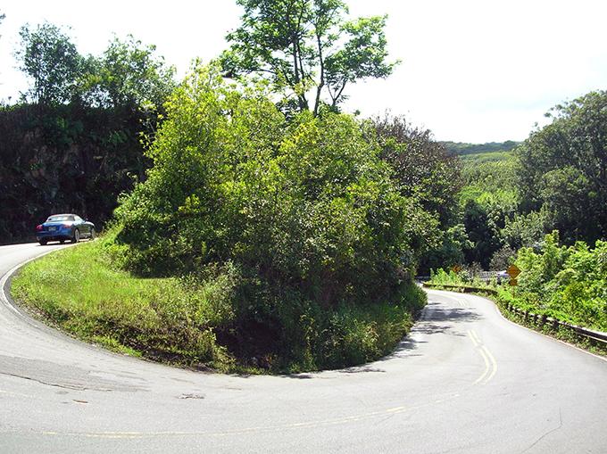 The Iconic Highway to Hana