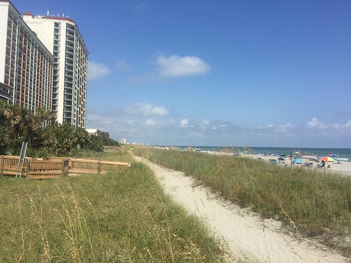An Escape to the Beach