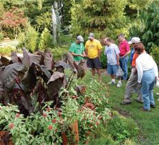 Hatcher Garden and Woodland Preserve